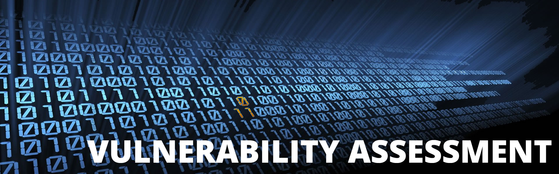 vulnerability-assessment